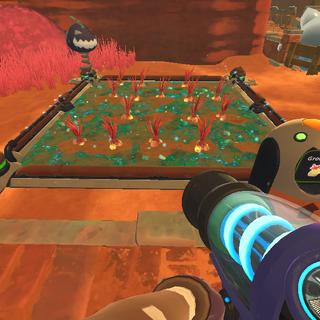 Oca Ocas being grown in a <a href=