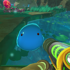 Puddle Slimes temporarily lose their