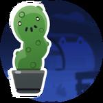 Tactus en Maceta