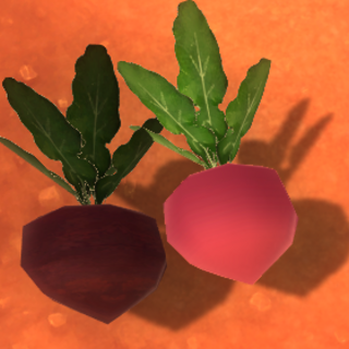 Old Heart Beet model from versions before 0.3.1.