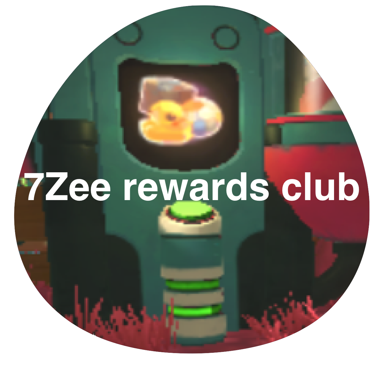 7Z rewards club