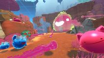 Slime-Rancher-Monomi-Park-DLC-Viktor-Experimental-Update-PC-wholesome-PS4-Xbox-One
