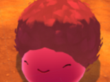 Feral Slimes/Gallery
