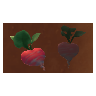 A normal Heart Beet and a rotten Heart Beet, side by side.