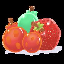 Fruit Catagory Transparent