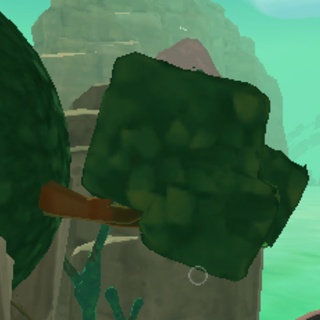 A hanging Cuberry Tree in <a href=