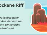 Das trockene Riff