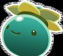 Rank-Slime