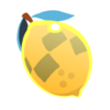 CitronDePermutation