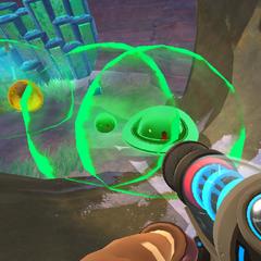 A Rad largo's aura is no bigger than a normal rad slime's aura.
