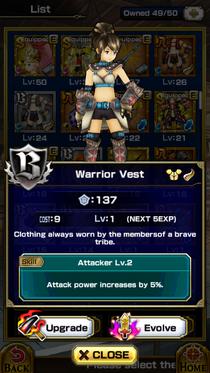Warrior Vest F