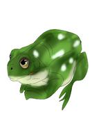 Benard the frog