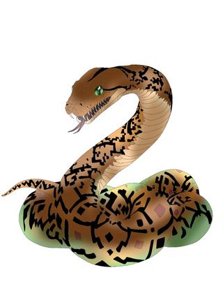Rajja the python