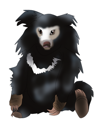 Pillow the sloth bear