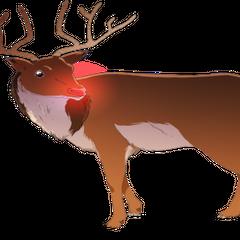 Rudolf <i>Reakcja:</i> Radość