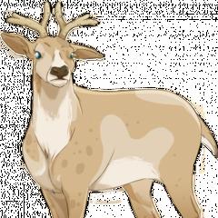 Dziewczyna dla Rudolfa