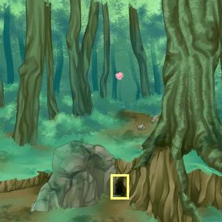 4) Mieszkaniec lasu