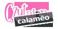 Calameo-baner