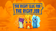 The Right Slug For The Right Job
