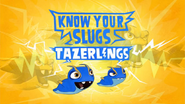 Know Your Slugs 'Tazerling'