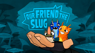 Our Friend The Slug