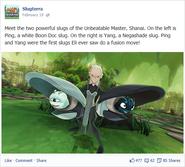 Shanai & her slugs, Ping & Yang (Facebook)