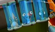 Zapatrzone śluzaki