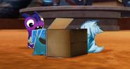 Mo w pudełku