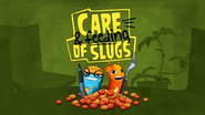 Care And Feeding Of Slugs!