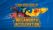 A High Speed Guide To MegaMorph Acceleration