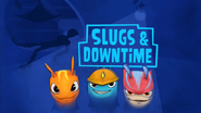Slugs And Downtime