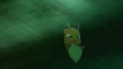 Burpy swimming
