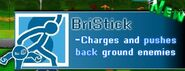 BriStick's Info