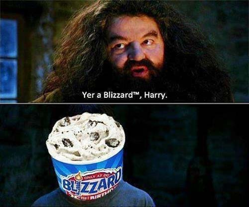 File:Potter-puns-blizard-harry.jpg