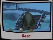 Bear-recon