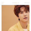 Kyuhyun Goodbye For Now digital cover art