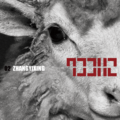 Lay Lay 02 Sheep digital cover art