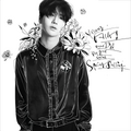 Yesung Spring Falling cover art