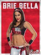 Brie Bella 2K18