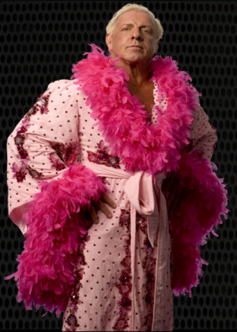 File:Ric Flair.png
