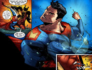 Wonder Woman SV S11 010 1382120354046