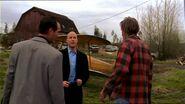Smallville120 207