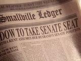 Smallville Ledger