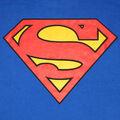 Superman insignia.jpg