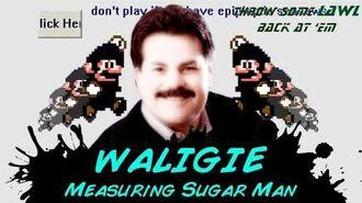 Throw Some Lawl Back At 'Em - Waligie Moveset -REMAKE-
