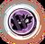 Df avatar 17362@2x