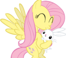 Fluttershy (Element of Kindness)