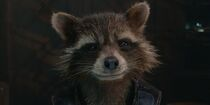 Rocket Raccoon.image