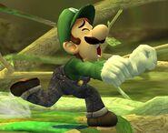 Luigi Profil Brawl 4