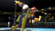Profil Captain Falcon Ultimate 1